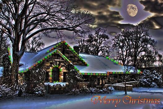 Christmas House by Mark Cranston