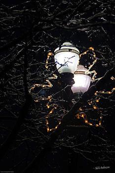 Mick Anderson - Christmas Light Post - Grants Pass