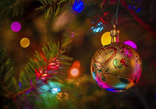 Christmas Lights by Robert Mitchell