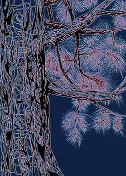 Andrea Carroll - Christmas Pine