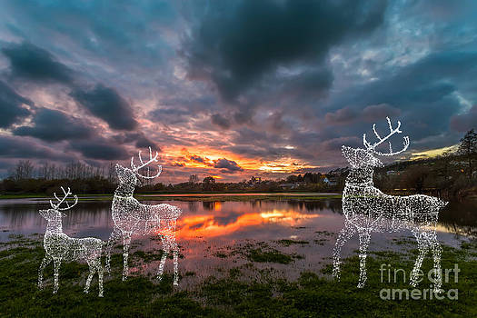 English Landscapes - Christmas Reindeer