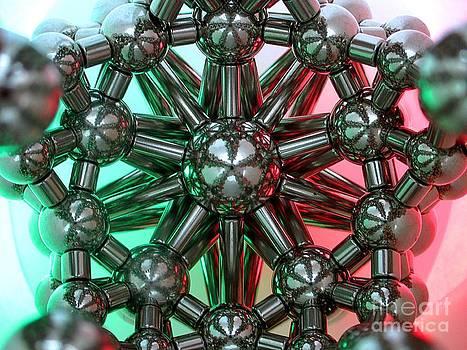 Christmas StarFlower by Mark Teeter