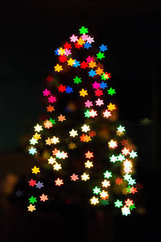 Christmas stars by Mike Lee