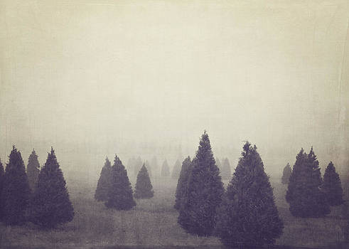 Christmas Tree Farm by Jessie Gould
