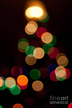 Christmas Tree Lights by Amy Bynum