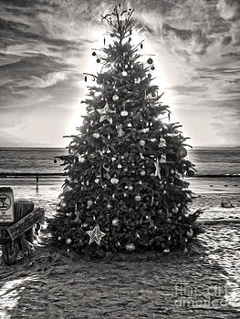 Gregory Dyer - Christmas Tree on the Beach