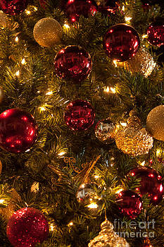 Christmas Tree Ornaments 1 by Joann Copeland-Paul
