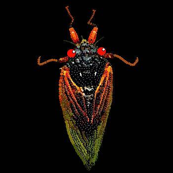 Cicada in Black by R  Allen Swezey