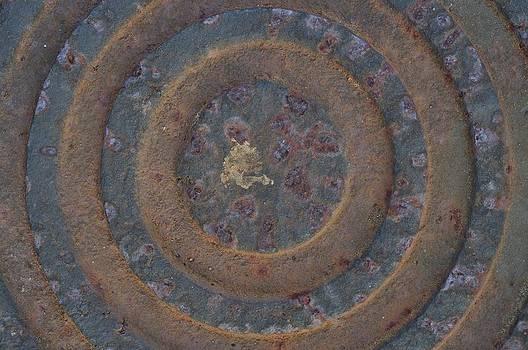 Circles by Jose Diogo