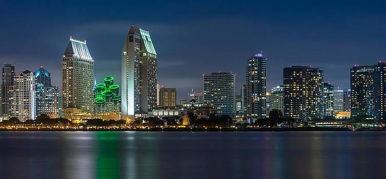 Larry Marshall - City of San Diego Skyline 2