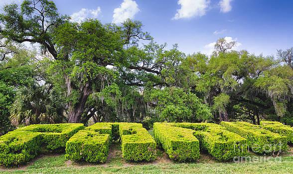 Kathleen K Parker - City Park New Orleans Louisiana