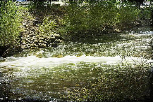Judy Hall-Folde - Clear Creek in Colorado