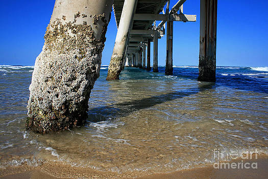 Clear Water Pier by Sarah Sutherland
