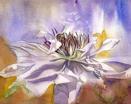 Alfred Ng - clematis with blue