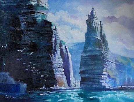Clffs  Of Mohar Ireland by Paul Weerasekera