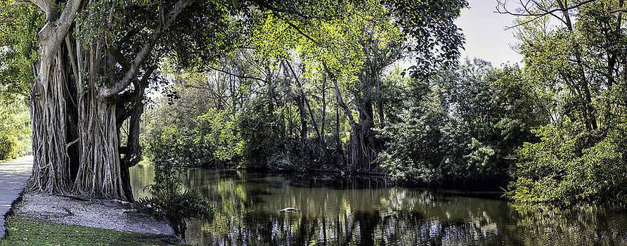 Lynn Palmer - Cliff Lake