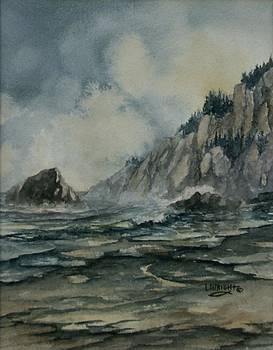 Cliffside by Lynne Wright