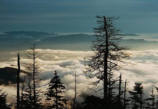 Clingman's Dome Sea of Clouds - Smoky Mountains by Michael Weeks