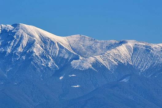 Ion vincent DAnu - Close-up of the Carpathians Mountains Transylvania