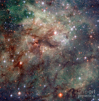 Science Source - Close-up Of The Tarantula Nebula