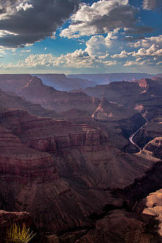Clouded Canyon by Roxanna Coeling