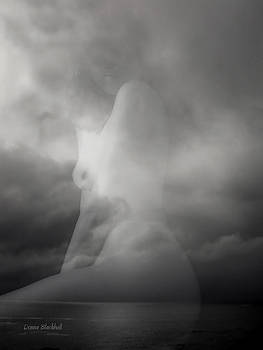 Donna Blackhall - Clouded Vision