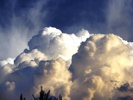 Clouds by Faouzi Taleb