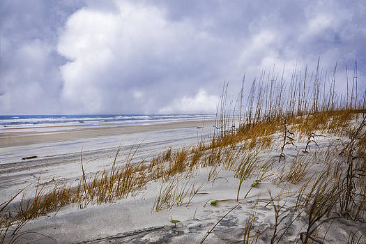 Debra and Dave Vanderlaan - Clouds Over the Dunes