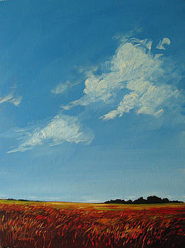 Clouds Over the Plains by Patty Baker