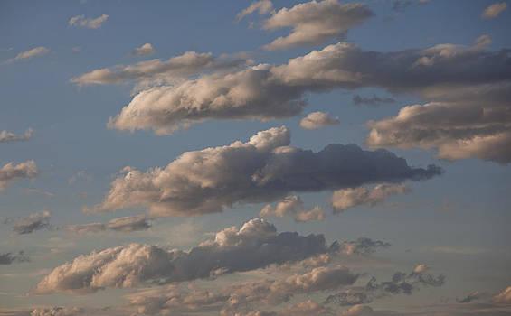Clouds by Ross Murphy