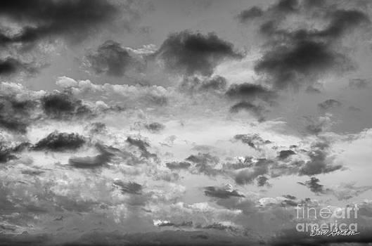 David Gordon - Cloudscape No. 5