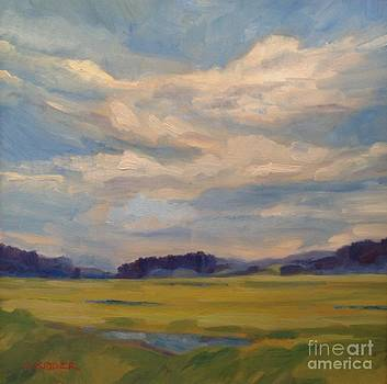 Cloudscape over the Marsh by Colleen Kidder