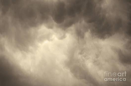 David Gordon - Cloudscape X Toned