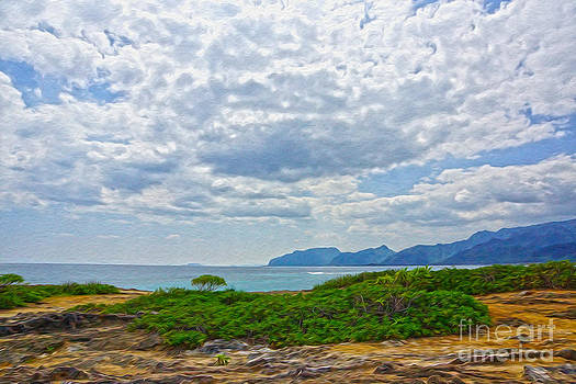 Cloudy day in Oahu by Nur Roy