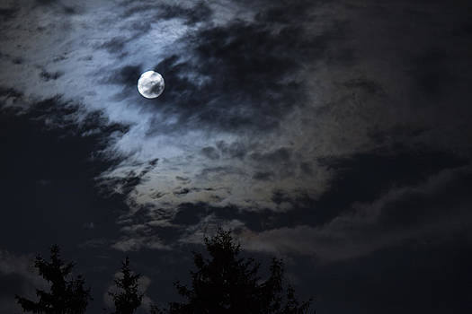 Cloudy Moon 1 by Alfredia Mealing