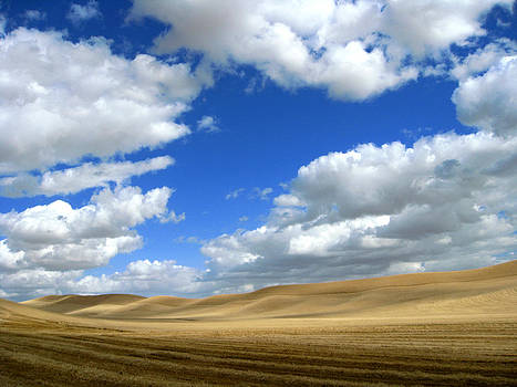 Cloudy Skies of Palouse by Anne Mott