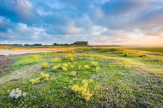 Coast sunrise by Maciej Markiewicz