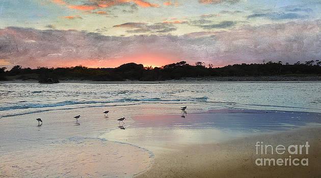 Coastal Beauty by Betty LaRue