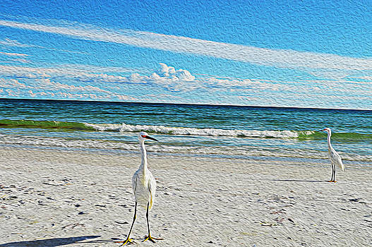 Coastal Life by Sherry Allen