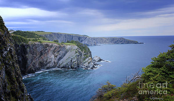 Coastal Newfoundland by Nancy Dempsey