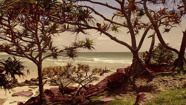 Coastal Pandanus by Kevin Perandis