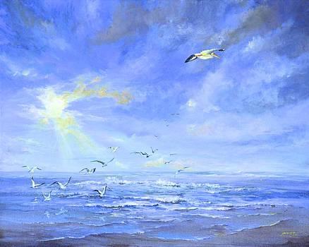 AnnaJo Vahle - Cocoa Beach Birds