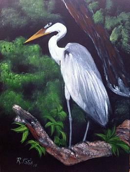 Cocoi Heron by Rich Fotia