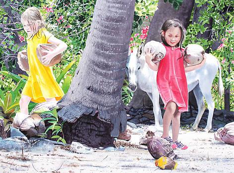Coconut Fairies by Denny Bond