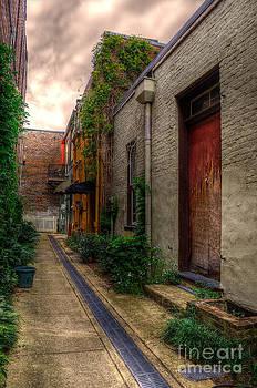 Coggin's Alley Way by Maddalena McDonald