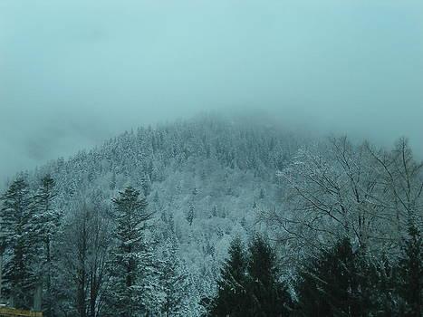 Cold Winter Romania by Andreea Alecu