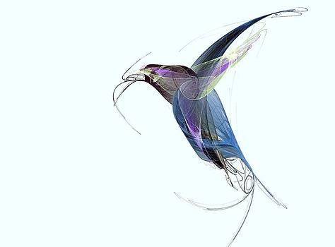 Colibri by Verginiya Ivanova
