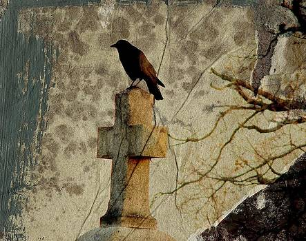 Gothicolors Donna Snyder - Collage Of Crow