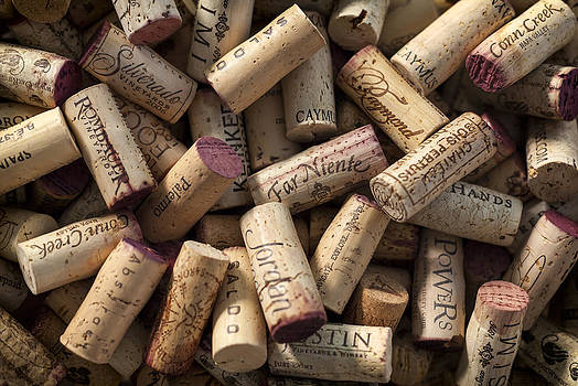 Adam Romanowicz - Collection of Fine Wine Corks