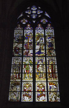 Teresa Mucha - Cologne Cathedral Stained Glass Window of the Nativity